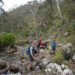 Stuart, Chris, Karen and Nic making our way down the Lerderderg River