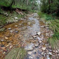 pyrites_creek1